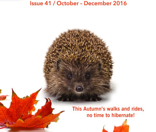 rsz_walking__cycling_newsletter_autumn_2016__front_page